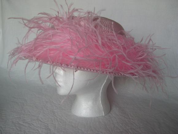pink_ostrich.jpg